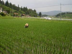 Kusatori7