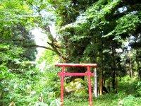 Tochi822_008