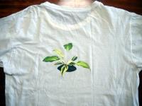 Tshirt026