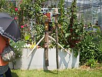 612_garden_6